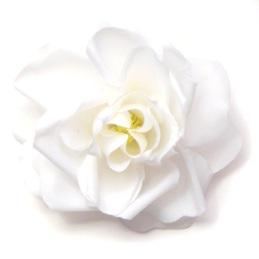 fp_whiterose_lg1.jpg
